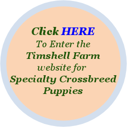 Timshell Farm for Specialty Crossbreed Puppies!