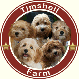 Timshell Farm Puppies
